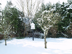 House Of Hope In The Snow