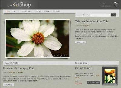 Artshop Premium Wordpress Shopping Themes
