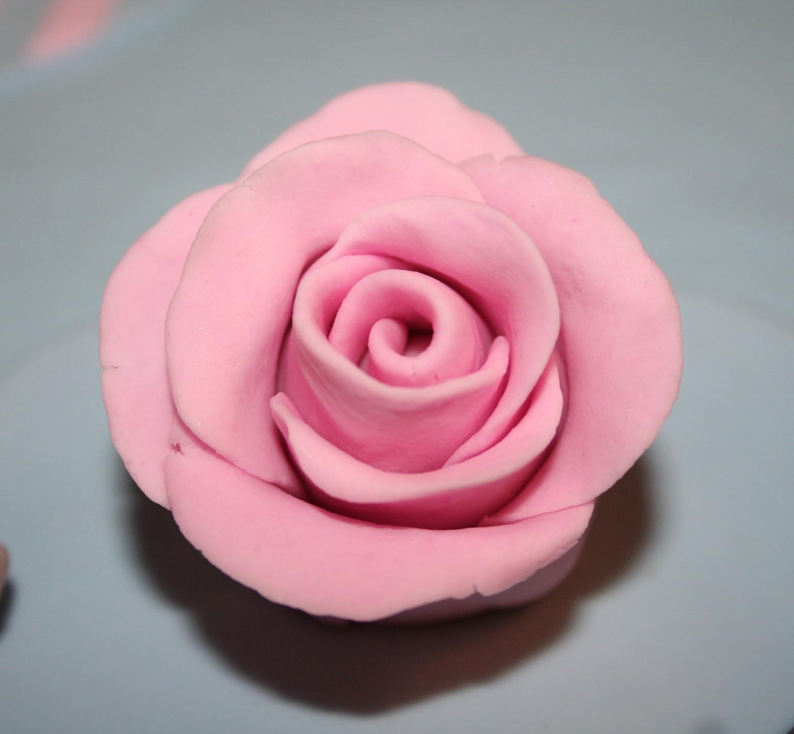 Macarons et mascara cake designer le g teau de garance en p te sucre - Faire des sujets en pate d amande ...
