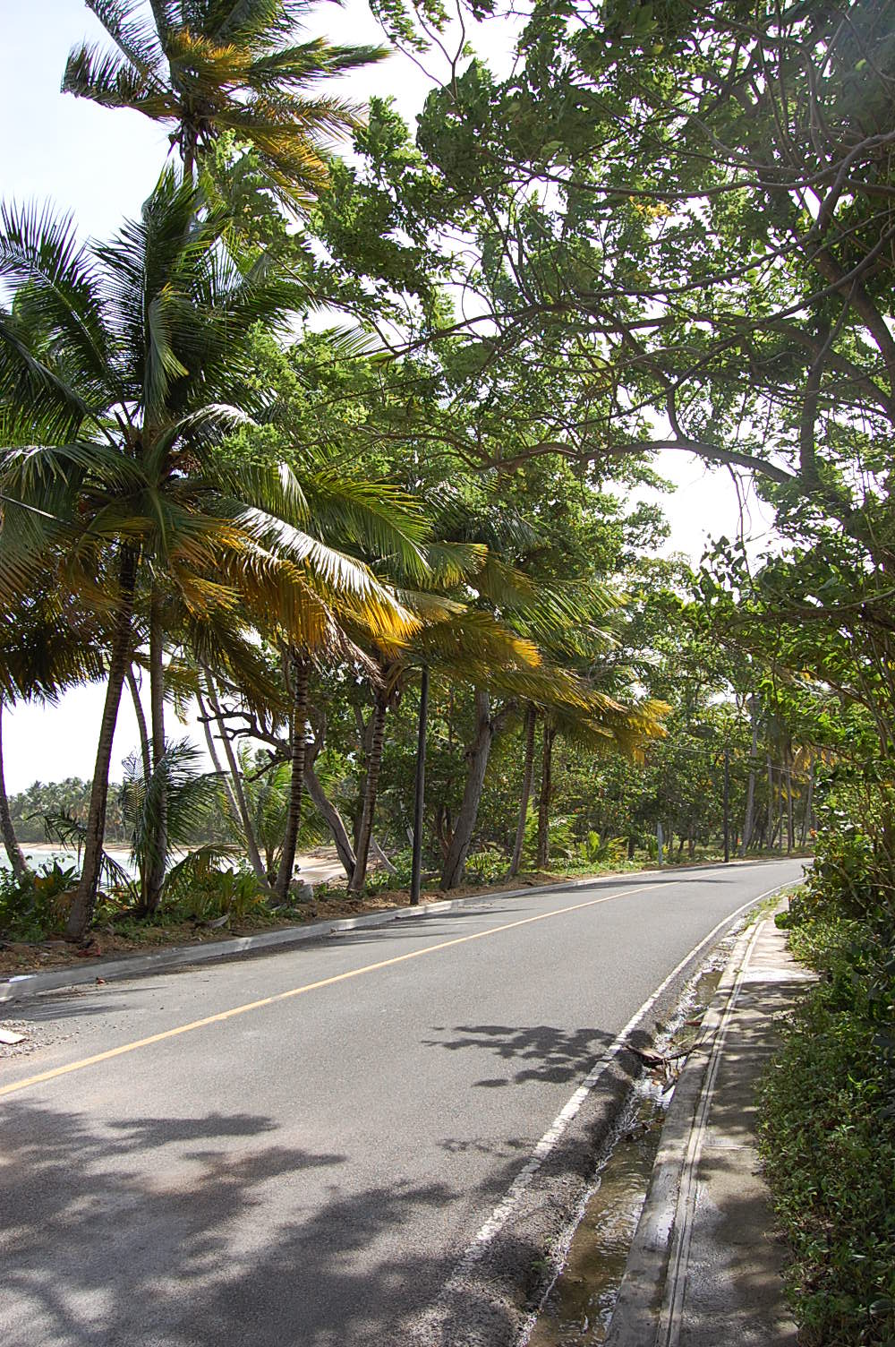 Samana living running routes in las terrenas dominican for Las terrenas