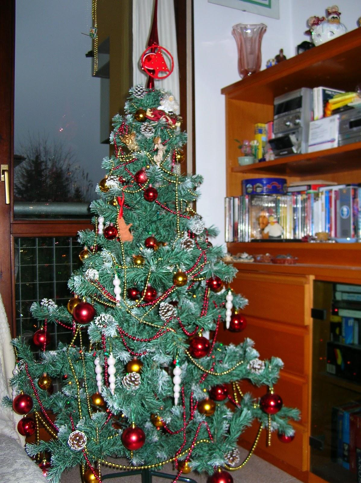 Clati 19 dicembre o tannenbaum - Come tenere la stella di natale in casa ...
