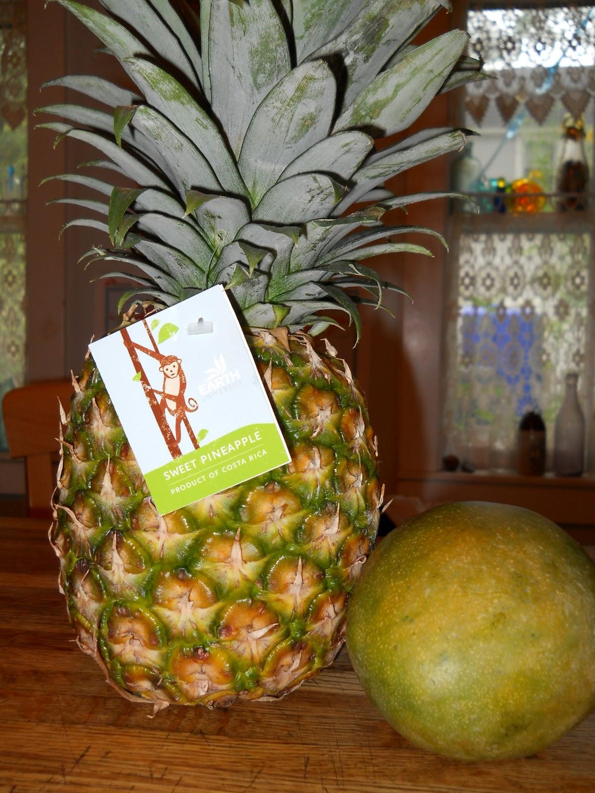 http://3.bp.blogspot.com/_wY6ZjnmSrGE/TFS6aWrDHEI/AAAAAAAABaI/K8rzkGIKTg8/s1600/Costa%2BRica%2B020.JPG