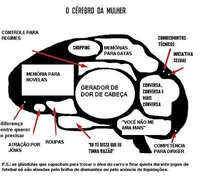 http://3.bp.blogspot.com/_wYDa9x_VCjk/SYDicO4M5HI/AAAAAAAAAGo/ZpGWkTwgUQc/s400/cerebro+mulher.bmp