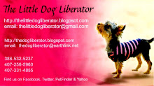 Welcome to The Little Dog Liberator