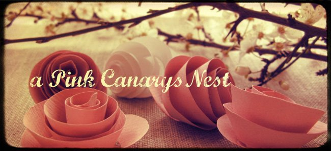 a pink canary's nest