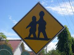 Cambodian crosswalk.....don't ask