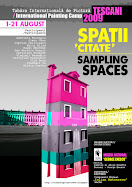 Proiectul Spatii Citate 2009 I Sampling Spaces Project 2009