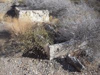 Cement water trough at Hackberry Spring Nevada