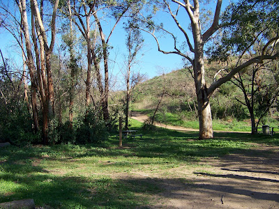 There are beautiful places to walk in Santiago Oaks Regional Park.
