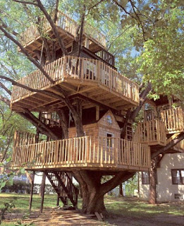 Amazing Wooden Tree House