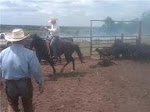 Ranch Horses for Sale........