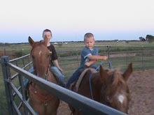 Kids Horses......