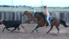 Roping Horses.......