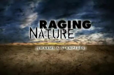Discovery Channel: Raging Nature Tornadoes (2010)