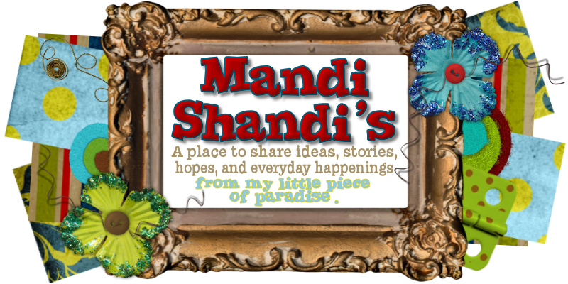 Mandi Shandi&#39;s