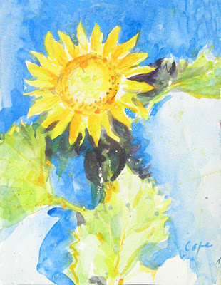 watercolour of a sunflower on a blue background