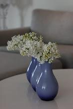 Blomster fra hagen..