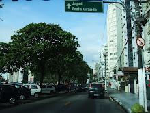 Avenida Pedro de Toledo