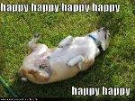 happy happy happy happy...