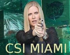 ★Calleigh Duquesne★ CSI Miami ★
