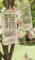 Não condicione os passarinhos