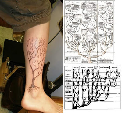 Most Wonderful Science Tattoos Seen On www.coolpicturegallery.net