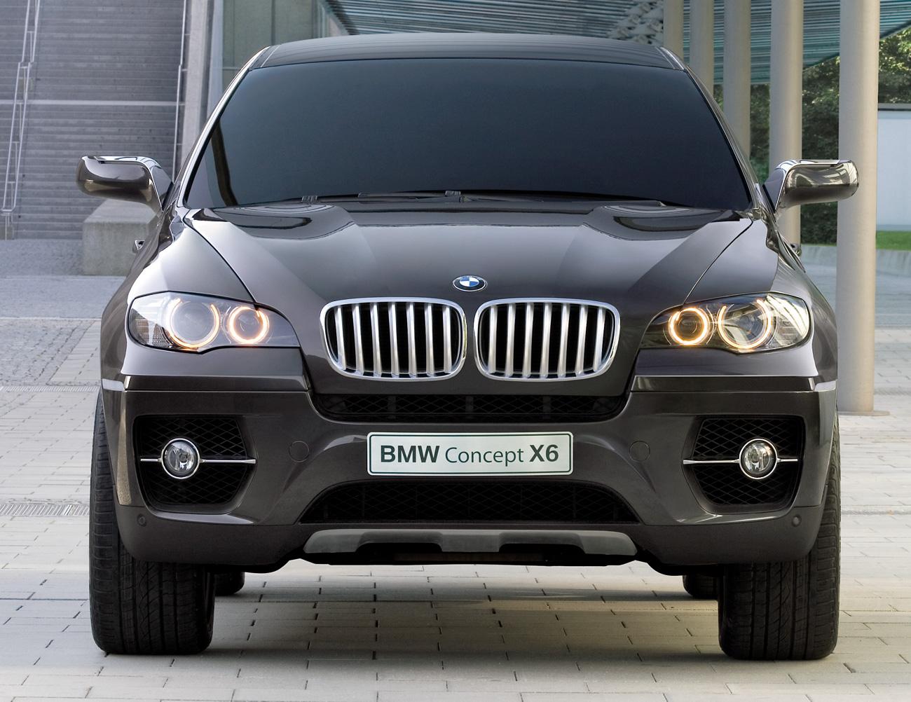 2011 BMW ActiveHybrid X6 Rear