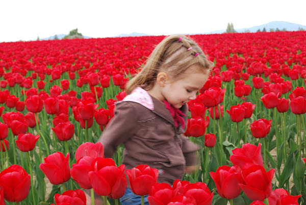 tiptoeing through the tulips