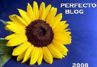 [Trofeo+perfecto+blog+2008.PNG]