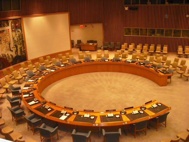 UN Security Council, December 2010