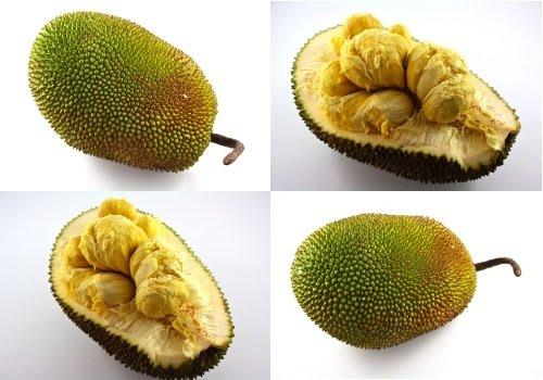 fruits of malaysia+essay