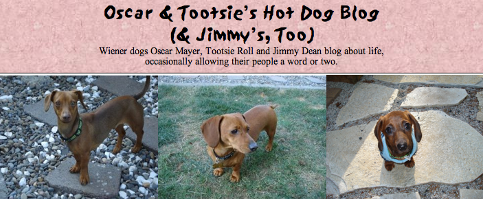 Hot Dog Blog by Oscar and Tootsie (and Jimmy, too)