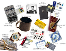 BANKSTER SURVIVAL KIT