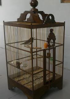 Model Sangkar Burung