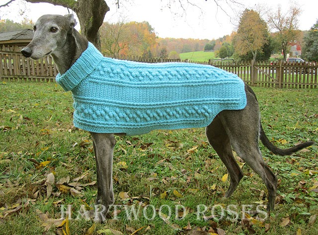 Free Crochet Pattern Greyhound Sweater : Hartwood Roses: Crocheted Dog Sweater for the Greyhounds ...