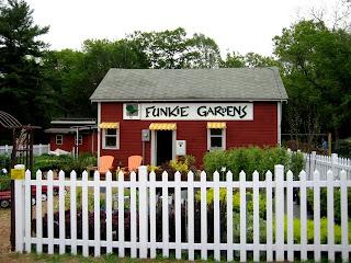 Funkie Gardens
