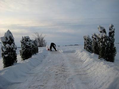 PB shoveling