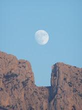 La Luna y el Puig duermen juntos