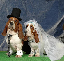 el mes de la bodas