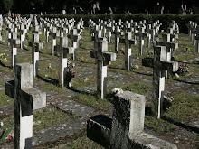 Los muertos del Jarama