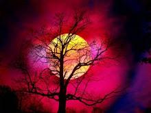 La mente es como un arbol donde se posan los pensamientos