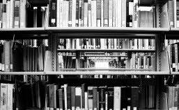 """""""Não existe literatura, existe autobiografia"""" Harold Bloom"""