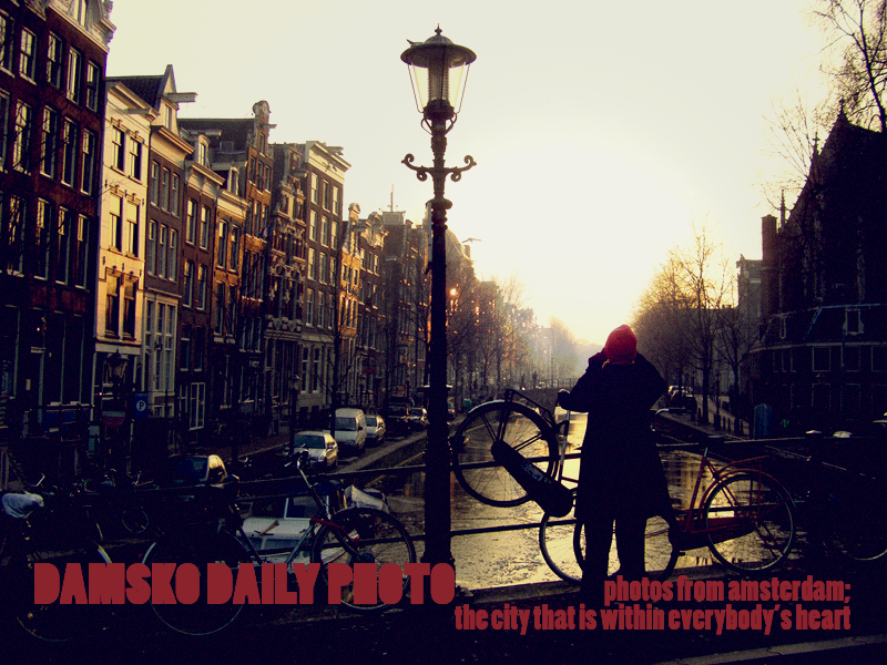 Damsko Daily Photo