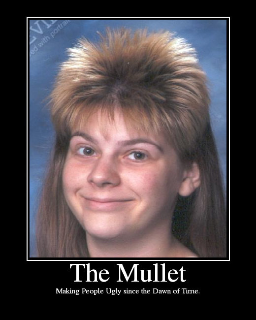 TheMullet.png
