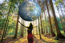 NR 31 - Atividades Rurais- Agricultura-Extração florestal-Silvicultura-Aquicultura-etc