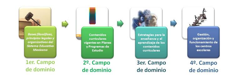 CAMPOS DE DOMINIO