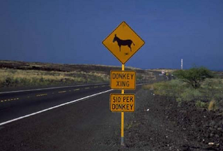 Donkey Crossing $10 per Donkey Sign
