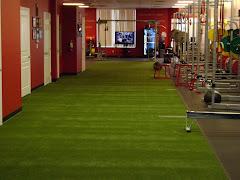 EA Gym