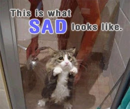 Shower day. . .