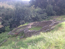 Castro de Troña